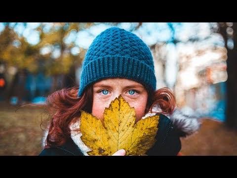 Snow Fall - Vendredi | Free Music