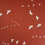 Birch Fabrics - Canvas Flight Paprika