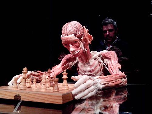 Cosa c'è nel cervello del giocatore di scacchi? by Ylbert Durishti