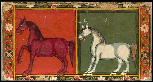 Nepal Horse Book a