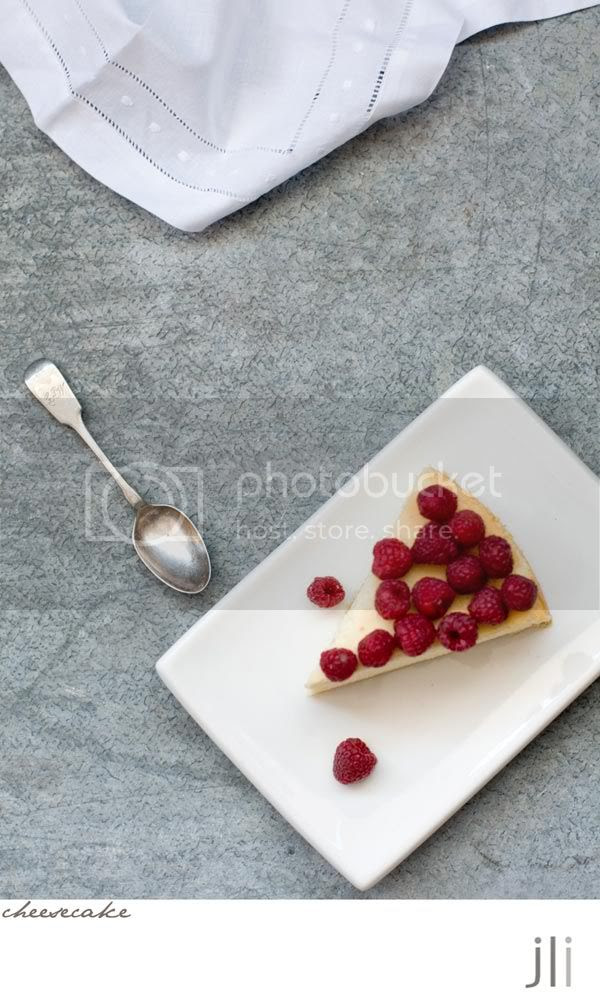 cheesecake,raspberry,cottage cheese,cream cheese,food photography,jillian leiboff imaging,sydney