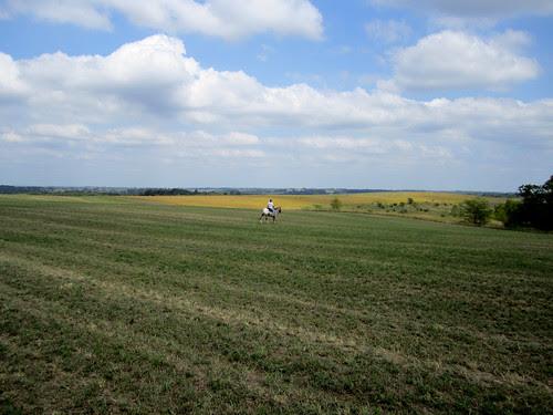 fieldride