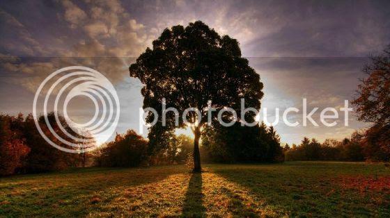 photo hd_wallpaper_7151-620x348.jpg