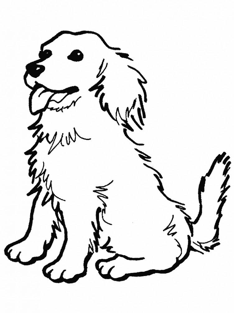 Köpek Boyama Resmi Resimleri Ve Fotoğrafları