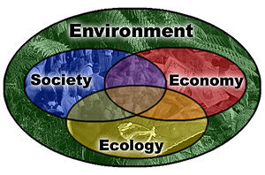 Diagram showing aspects of sustainable develop...