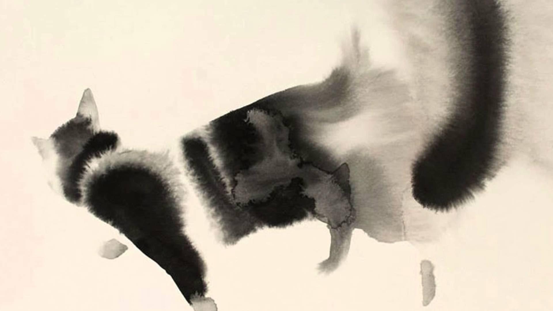 Cat Watercolor Wallpaper