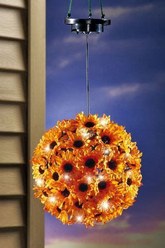 ideas  fall mums  pinterest mums