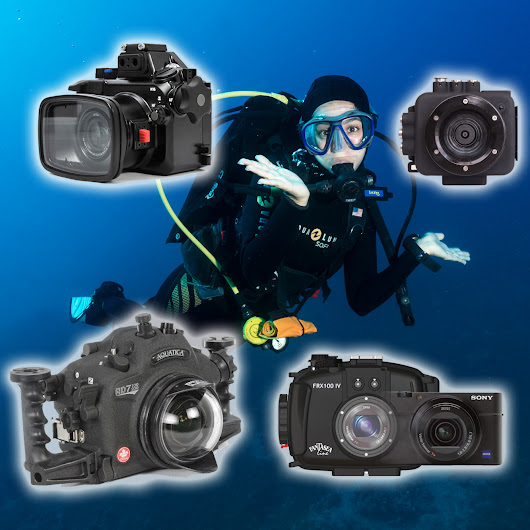 Choosing Your First Underwater Camera