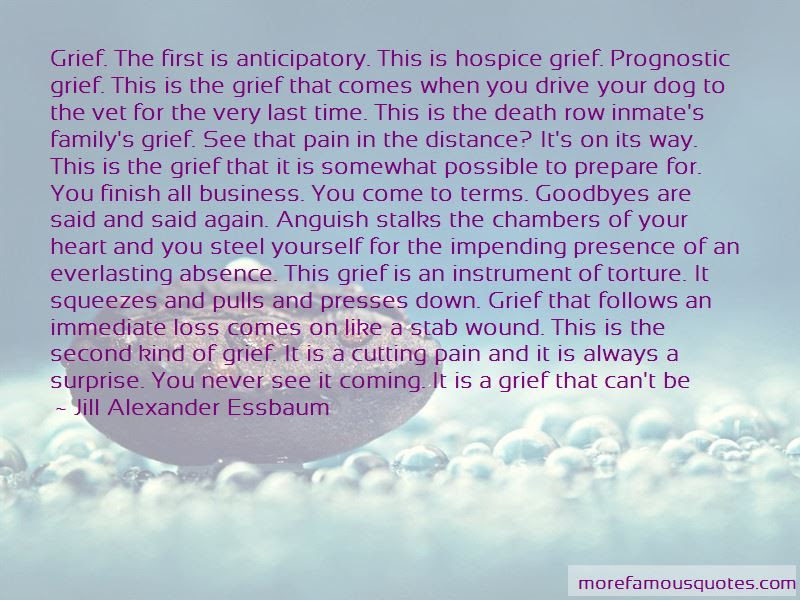 Grief Dog Death Quotes Top 2 Quotes About Grief Dog Death From