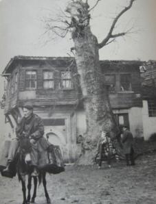 Plátano en el barrio de Sulukule, primera mitad del s.XX