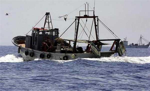 Τέλος η αλιεία με βιντζότρατα