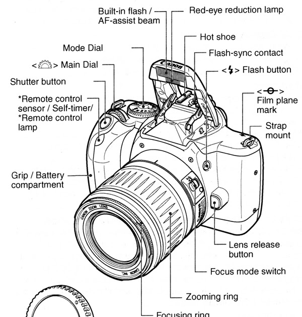 Bestseller: Cannon Eos Rebel K2 Manual