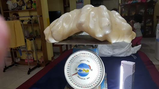 World's Biggest Pearl Found in Palawan | Tourist Spots Finder