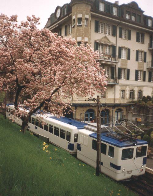 Lausanne Metro Map