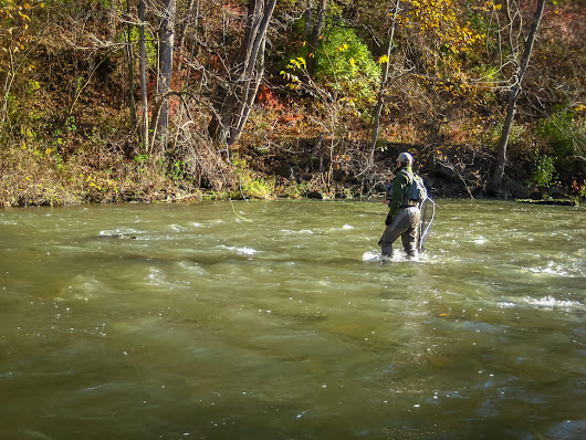 Wading Basics and Tips | The Fly Fishing Basics