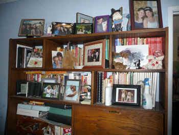bookcase.jpg (133868 bytes)