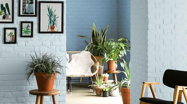 Peinture : 12 nuances bleutées pour toute la maison