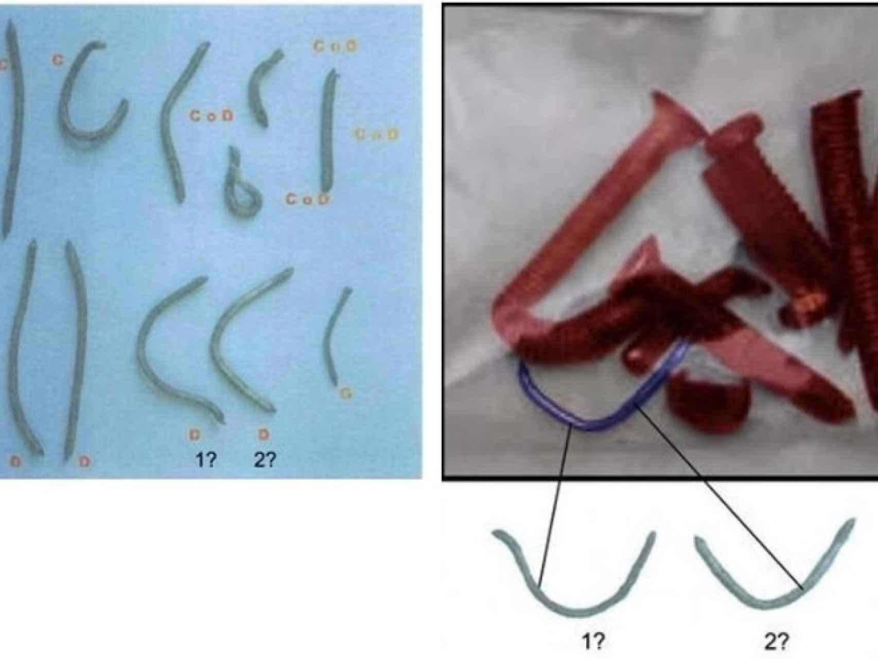 Imágenes de las muestras M-6-9. Izquierda, en 2005; derecha, en 2007.