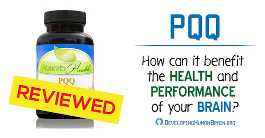 PQQ-How Can It Benefit Health and Performance of Your Brain?