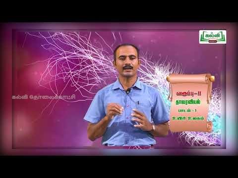 11th Botany உயிரின உலகின் வகைப்பாடு பாடம் 1 Kalvi TV