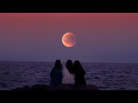 Travel Lovers - Vendredi | Free Music