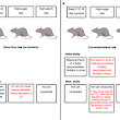 Sugar industry sponsorship of germ-free rodent studies linking sucrose to hyperlipidemia and cancer: An historical analysis of internal documents