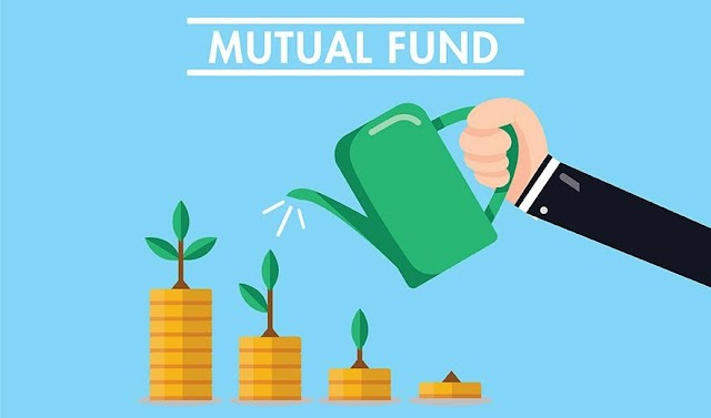 Top Performing Mutual Funds & Stocks Of January 2021