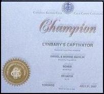 Chef's Championship certificate
