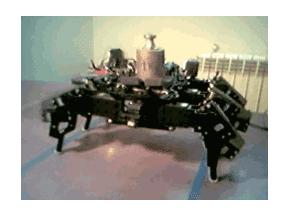 Các dự án Robot khác nhau