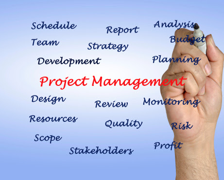 Choosing Project Management Software | Small Biz Daily