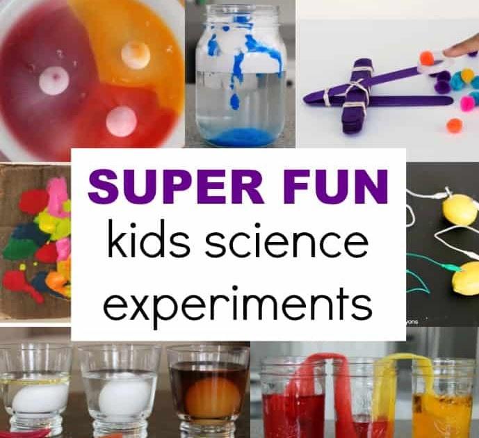 Egg In Soda Experiment Worksheet - Nidecmege