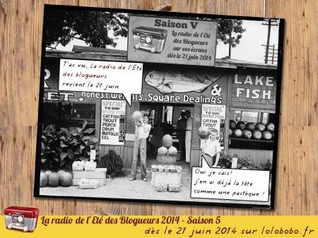 RDB2014-pre-affiche-001.jpg