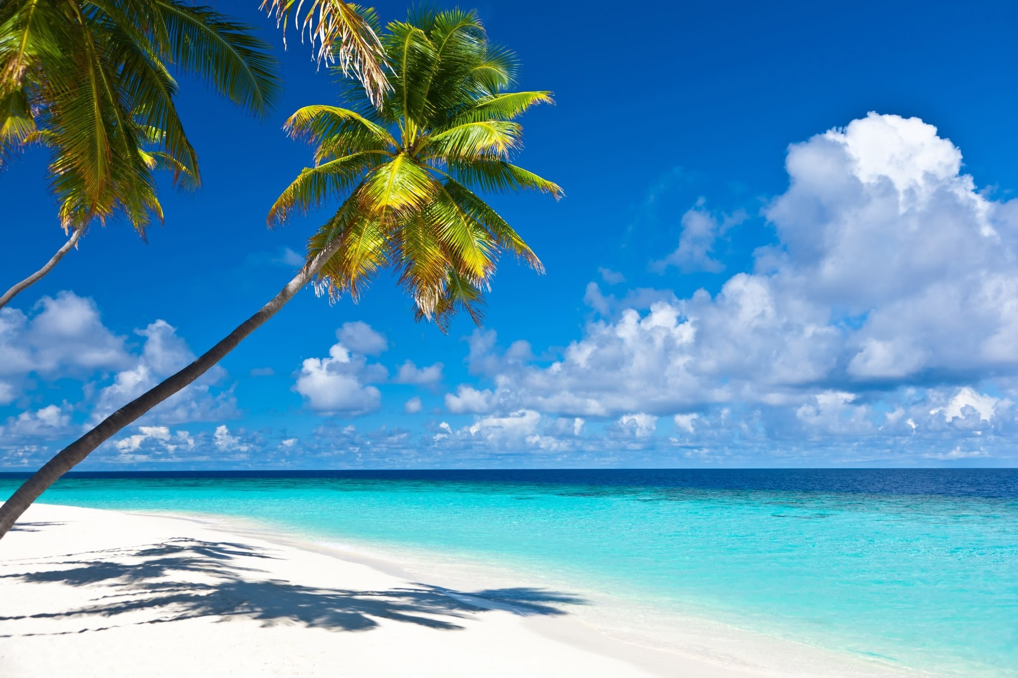 Caribbean Beach Pictures Wallpaper 70 Images Huge Free Wallpaper Download