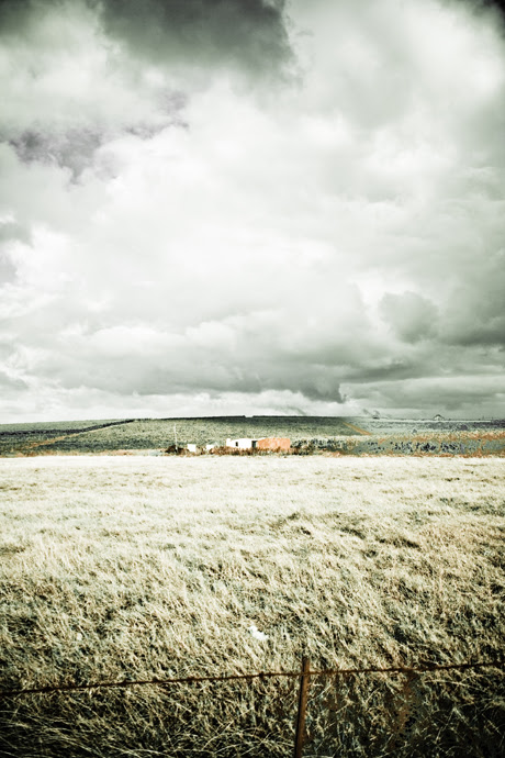 Field - Riebeek Kasteel