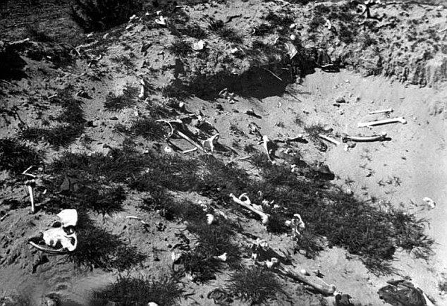 Horror: Human remains at Treblinka where Gross claims Polish peasants dug up human remains after the war