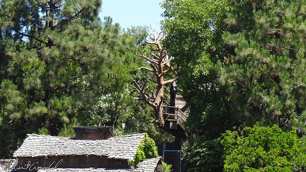 Disneyland Resort, Disneyland, Treehouse, Tom Sawyer Island