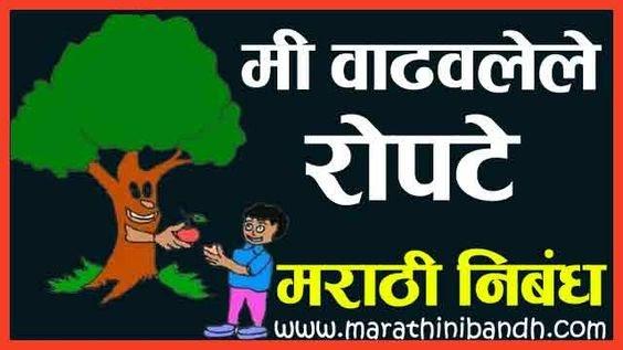 मी वाढवलेले रोपटे मराठी निबंध | Tree Nibandh In Marathi