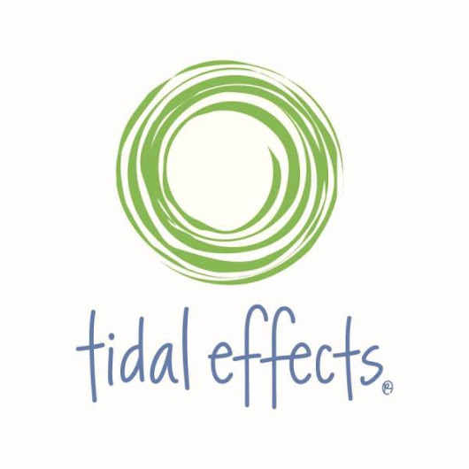 Holiday Giveaway Festiview with Tidal Effects
