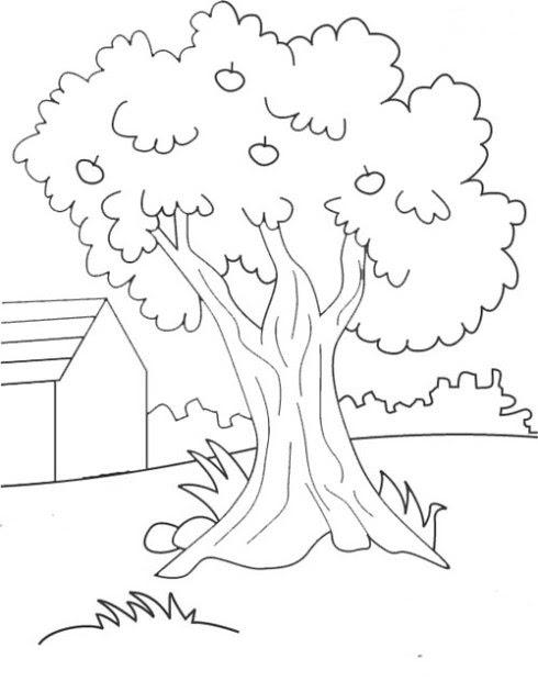 Gambar Pohon Natal Lengkap Kumpulan Gambar Lengkap Gambarmugo