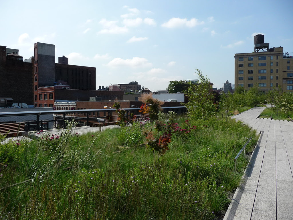 Photo of the High Line pathway