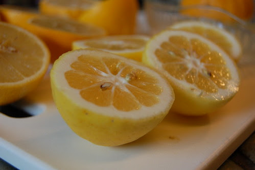 Meyer Lemons and Bergamot Oranges