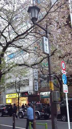 2013-03-30_12-52-47_935.jpg