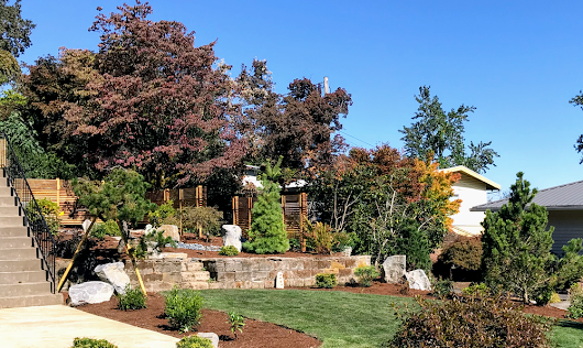 Landscape Project Profile: Japanese Inspired Garden in SW Portland