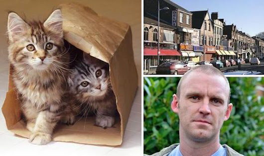 Animal lover describes horror moment he found bag of CATS' HEADS near 'Curry Mile'