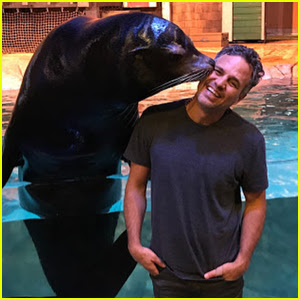 Mark Ruffalo Hung Out With A Seal & It Was Adorable!