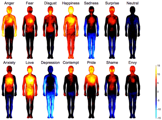 Body maps show where we feel emotion