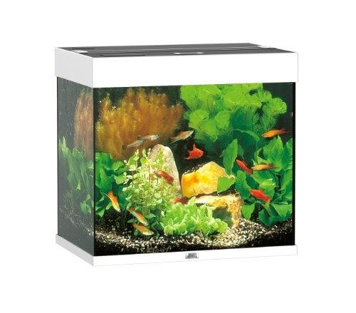 aquarium lido juwel 120l blanc clairages. Black Bedroom Furniture Sets. Home Design Ideas