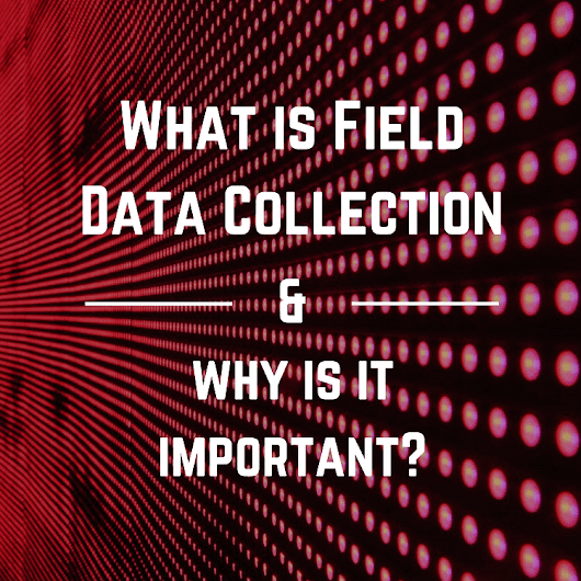 What Is Field Data Collection And Why Is It Important? | Globalme