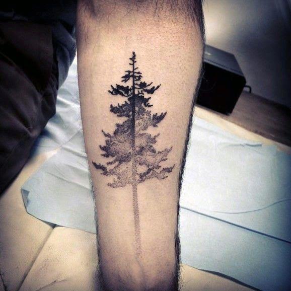 Tattoo Trends Mens Forearm Pine Tree Tattoo Designs