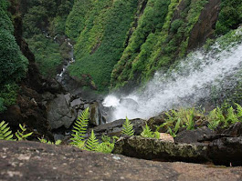 A Winter Trip From Bangalore To Agumbe - Nativeplanet